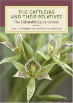 The Cattleyas and Their Relatives: The Debatable Epidendrums
