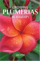 Growing Plumerias in Hawaii