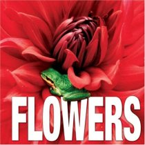 Flowers (Cube Books)