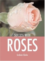 Success with Roses