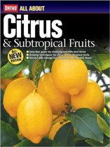 All About Citrus and Subtropical Fruits