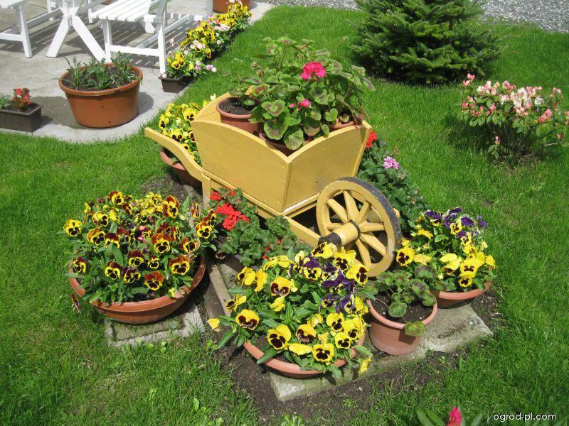Zahrada květen 2013