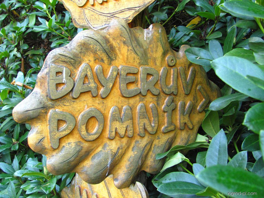 Arboretum Křtiny - směrovka Bayerův pomník