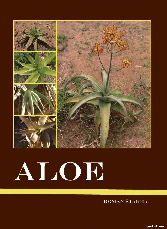 ALOE - publikace